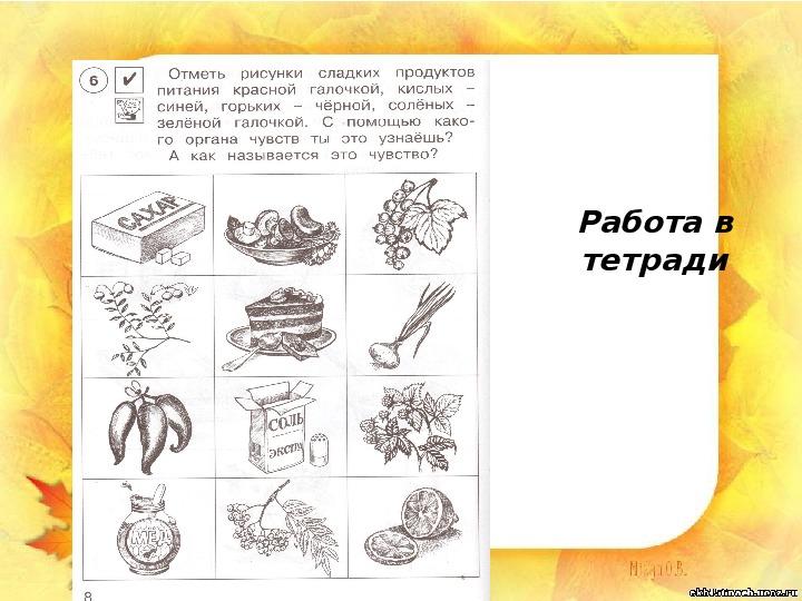 """Презентация """"Что нас окружает"""" (1 класс, окружающий мир)"""