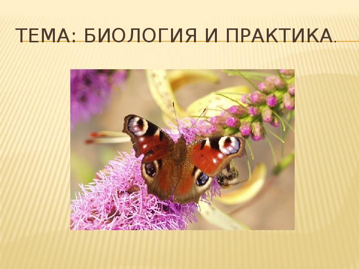 """Презентация """"Биология и практика"""" 5 класс"""