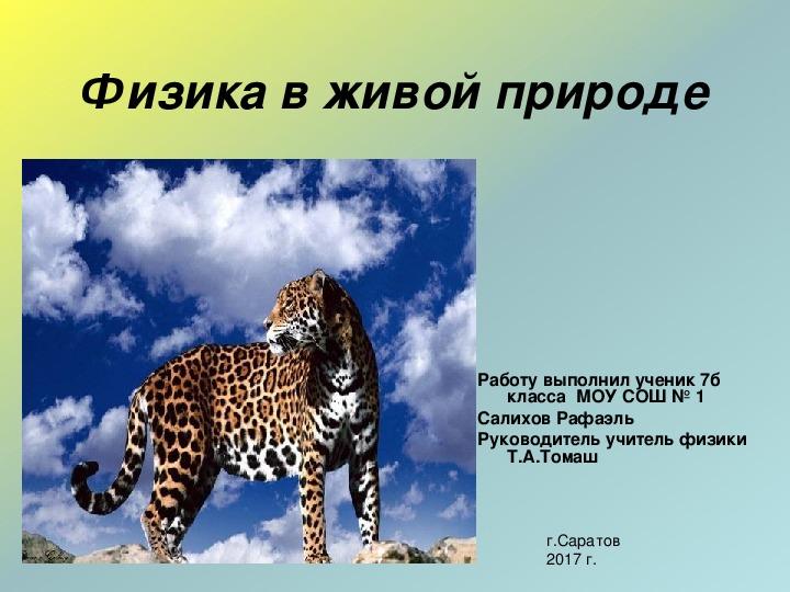 Презентация Физика в живой природе