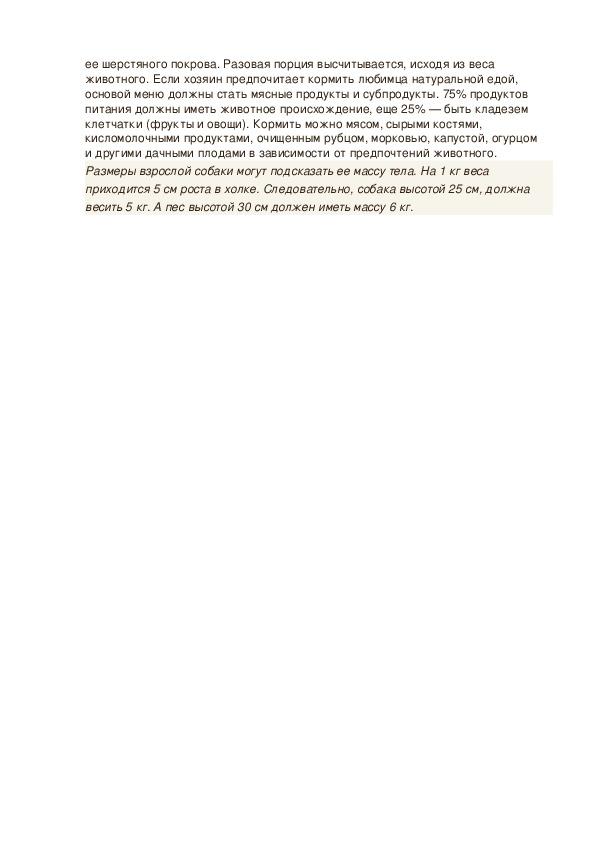 Джек-рассел-терьер: описание, плюсы и минусы породы