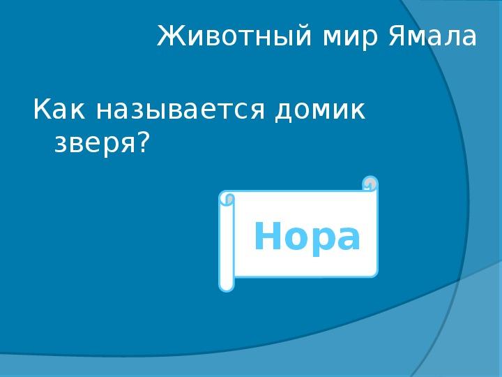 Творческая познавательная игра-экспедиция «Мой край Ямал»