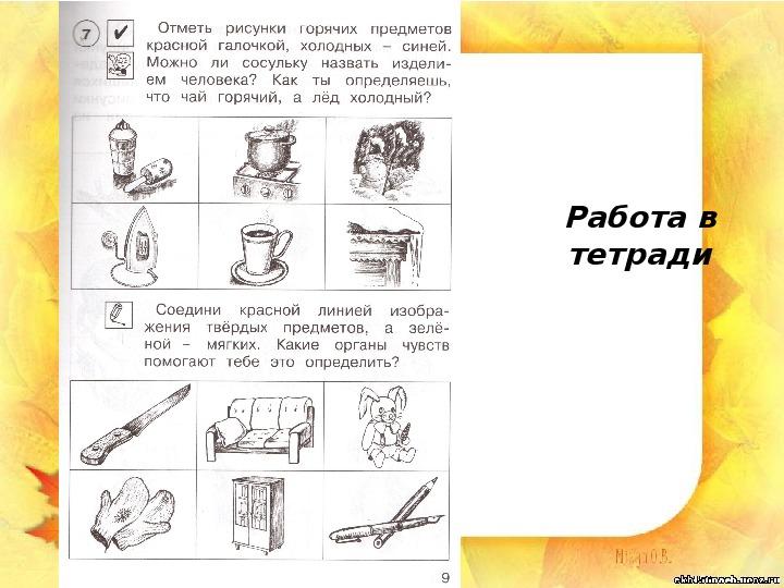 """Презентация """"Мы познаём окружающий мир с помощью органов чувств"""" (1 класс, окружающий мир)"""