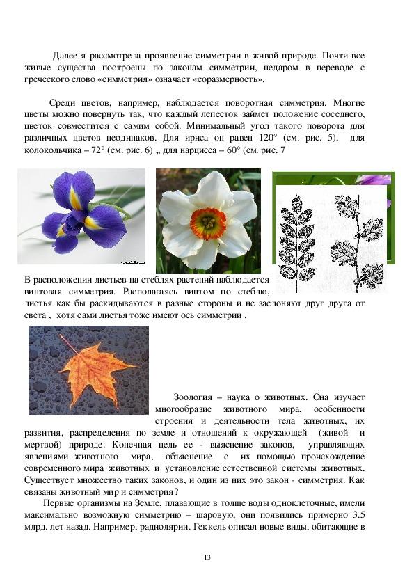 Волшебная симметрия и загадочные фракталы