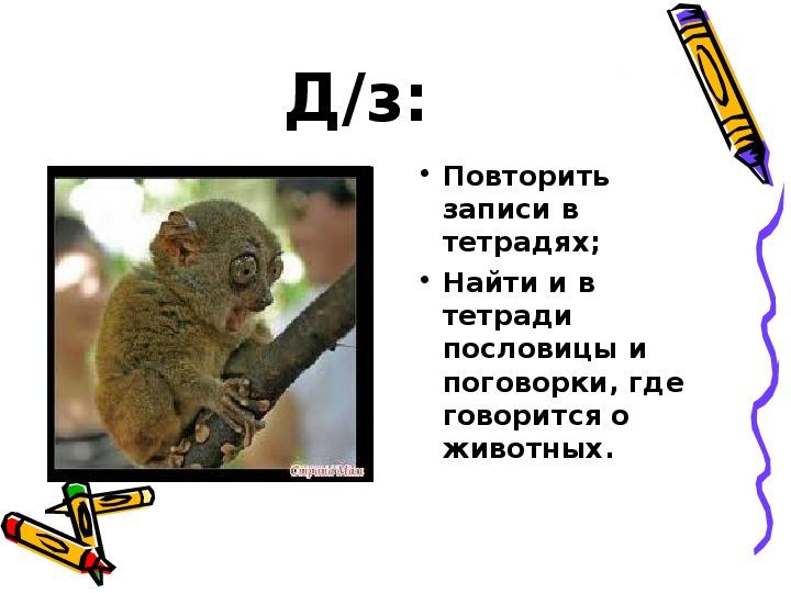 Методика преподавания биологии по теме: «Общая характеристика животных и их разнообразие»
