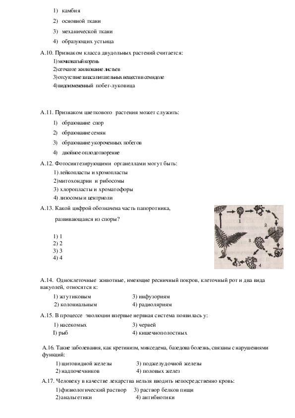 Итоговая работа по биологии для выпускников 9 класса (10 вариантов)
