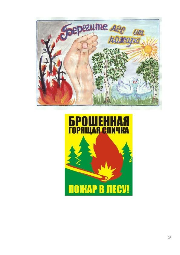 Искусственное и естественное восстановление лесов после пожаров