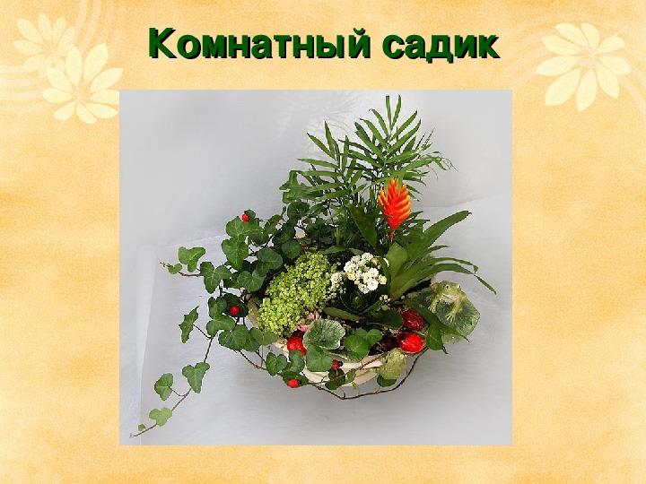 """Презентация """"Роль комнатных растений в интерьере"""""""