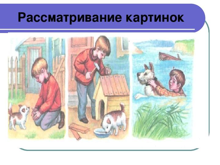 Серия картинок мальчик и собака