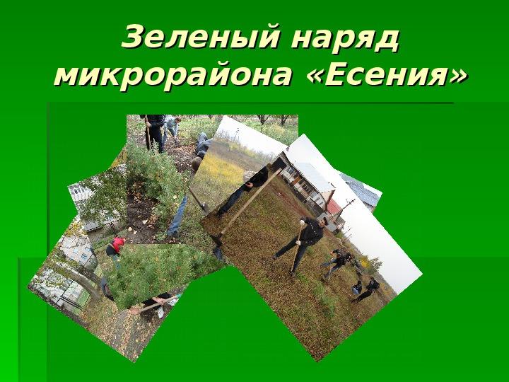 Зеленый наряд микрорайона «Есения»