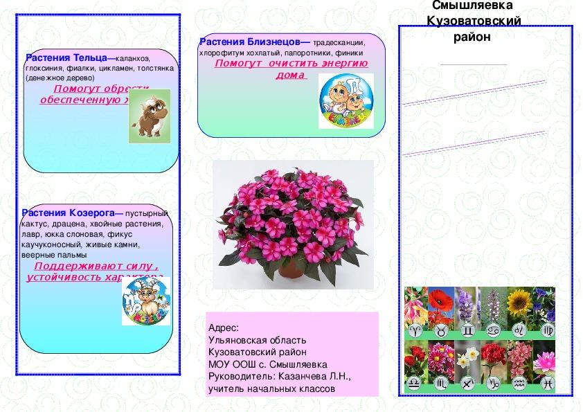 """Буклет """"Цветочный гороскоп"""""""