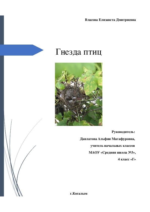 """Проектно-исследовательская работа """"Гнезда птиц""""."""