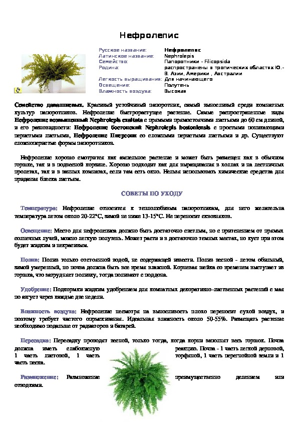 Паспорт комнатных растений для кабинета биологии