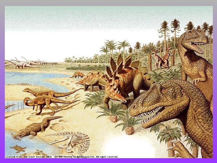 """Презентация к творческой работе учащегося по теме: """"Гипотезы вымирания динозавров"""""""