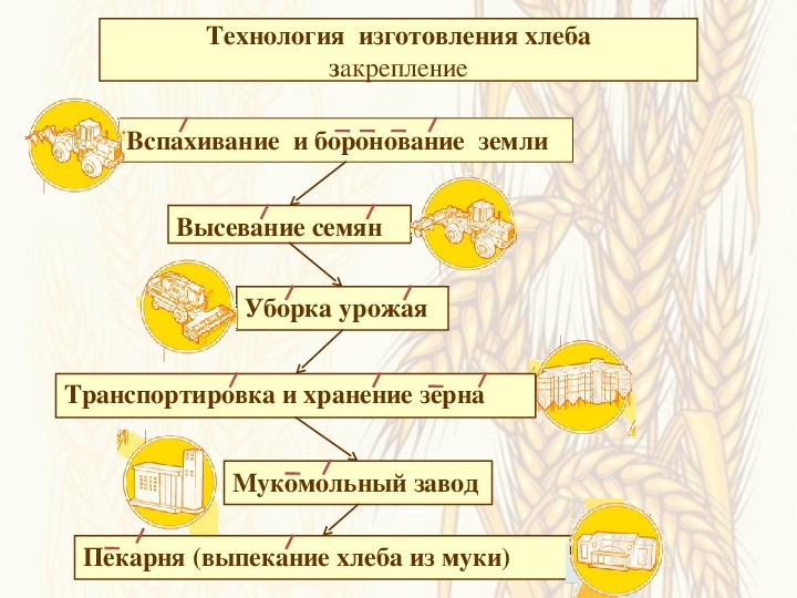 """Виртуальная экскурсия """"От зёрнышка до Каравая"""" (4 класс, ОЗМ)"""