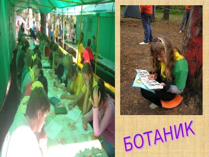 Программа  профильной смены областного палаточного лагеря «Областной слет школьных лесничеств и детских экологических объединений  «Юные друзья природы»