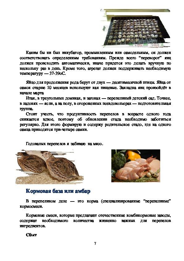 1.Презентация    и   выступление Бизнес  проект  перепелиная  мини  фермы «Перепёлка»