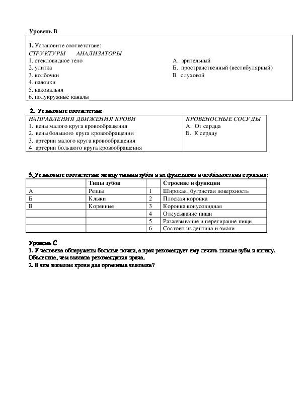 Итоговый контрольный тест по биологии 8 класс с ответами