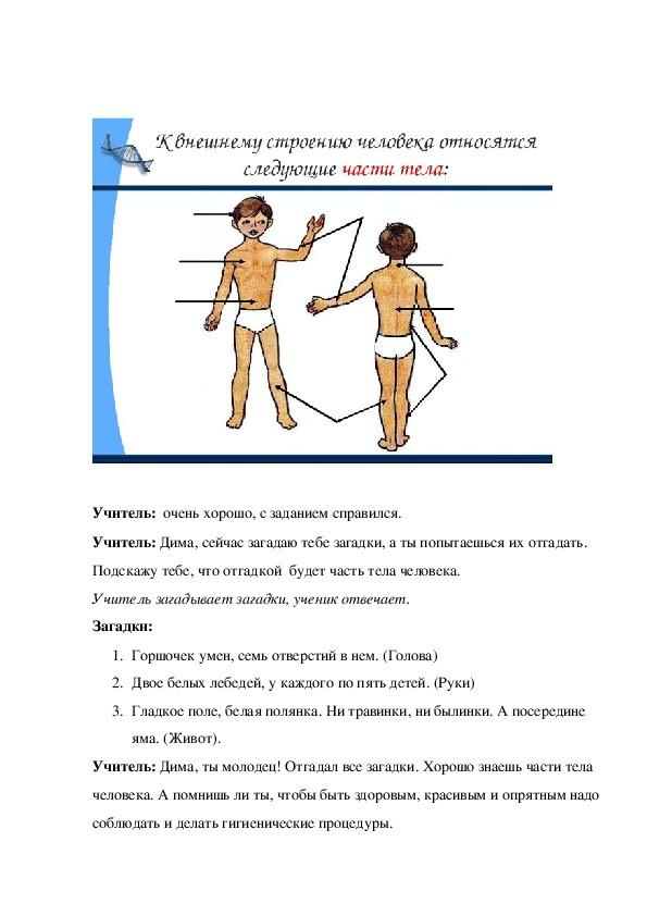 """Открытый урок по биологии на тему """"Внешнее строение человека. Гигиенические процедуры"""" (8 класс, биология)"""