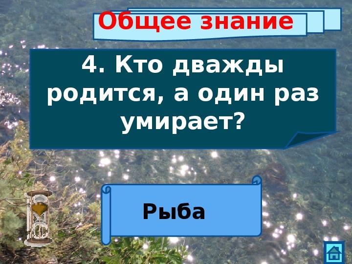 """Презентация - викторина """"Море и его обитатели"""" (4-6 класс)"""