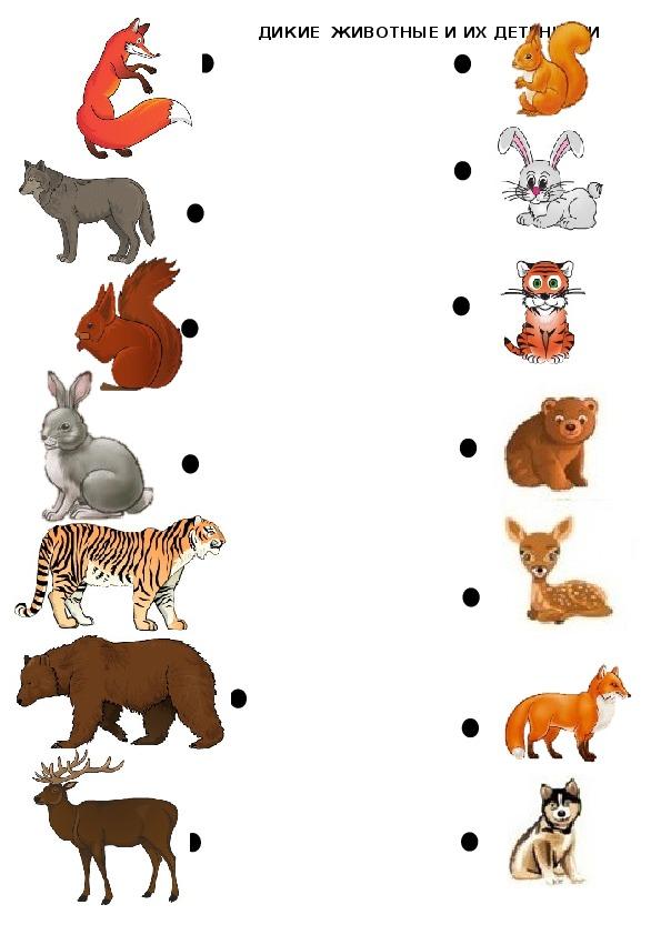 Картинки животные и их детеныши играть