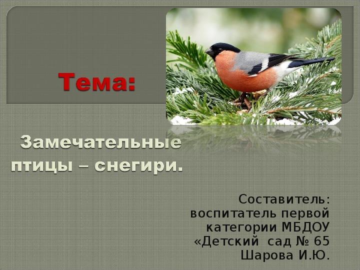 """Презентация к проекту """"Снегири"""""""
