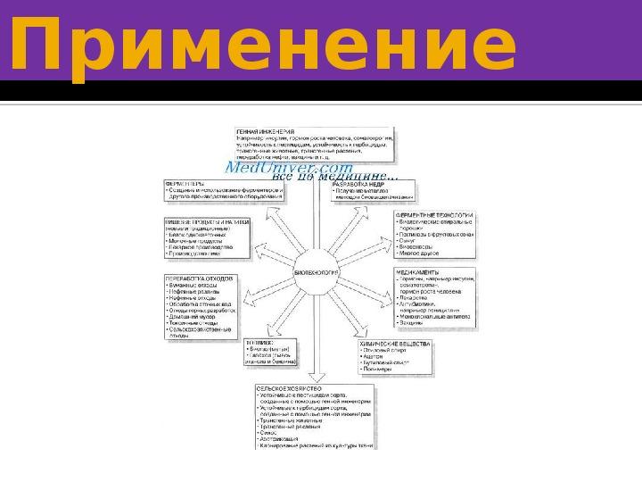 """Презентация по биологии на тему """"Биотехнология"""" (10 класс)"""