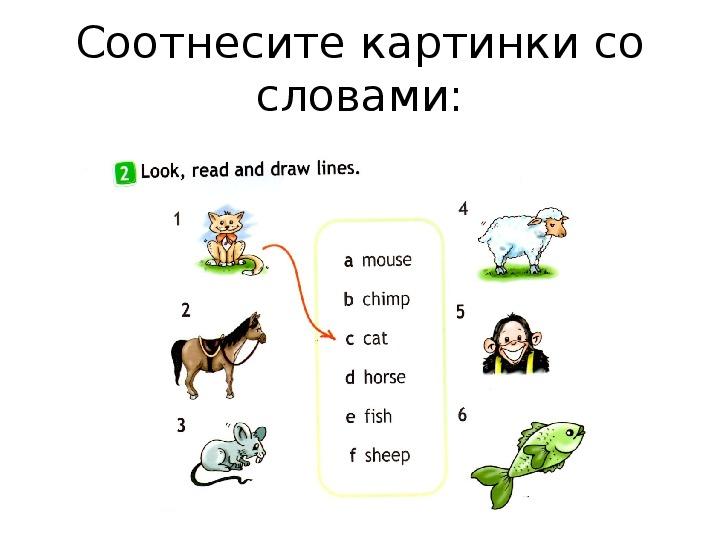 """Презентация  по английскому языку на тему """"Я могу"""" (2 класс, английский язык)"""