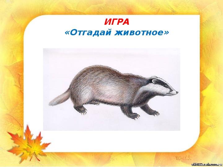 """Презентация """"Как животные готовятся к зиме"""" (1 класс, окружающий мир)"""