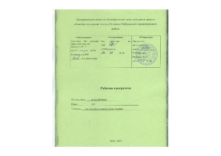 Рабочая программа по русскому языку 5-9 класс к учебнику В.В.Бабайцевой