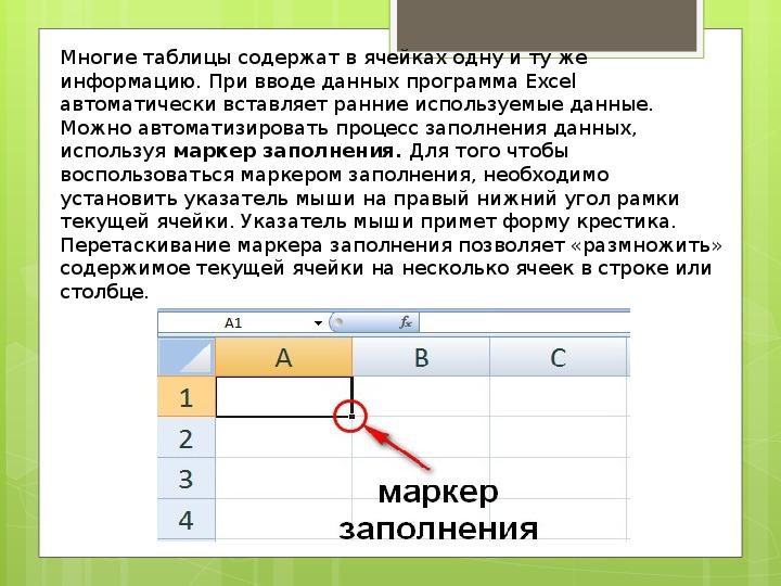 Технология обработки числовой информации Microsoft Office Exсel