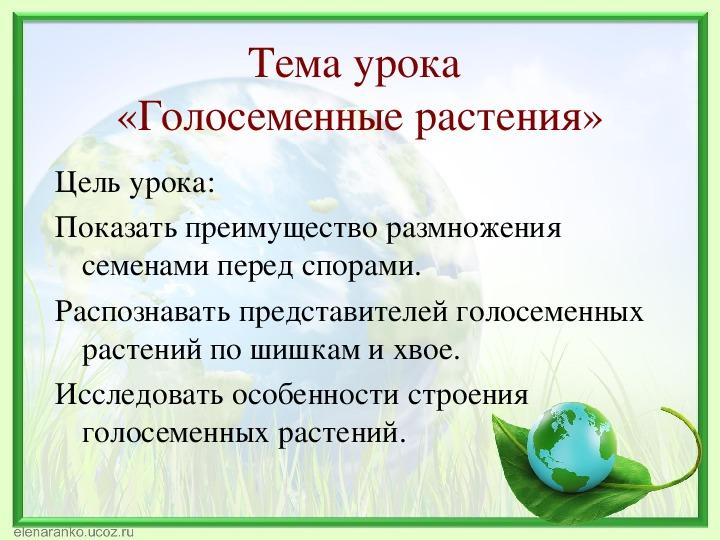 """Урок биологии по теме """"Голосеменные"""" (5 класс, биология)"""