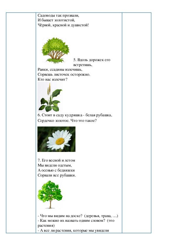 """Краткосрочный план урока по естествознанию """"Какие бывают растения"""""""