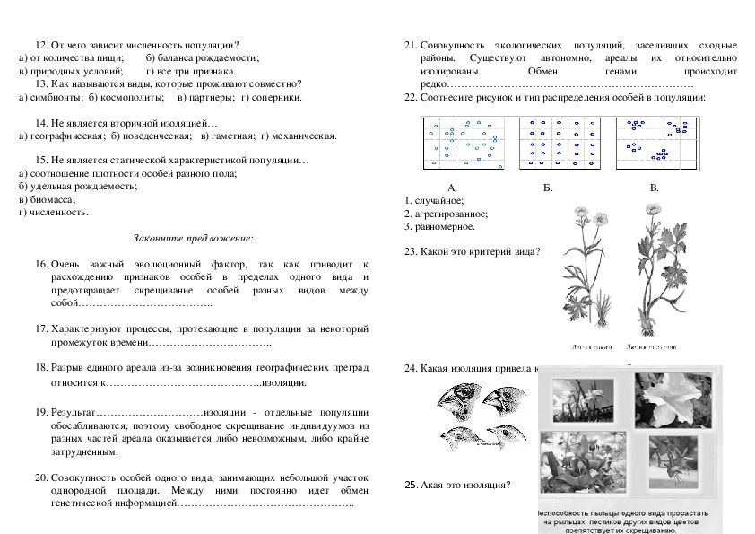 Проверочная работа по теме вид и популяция 11 класс