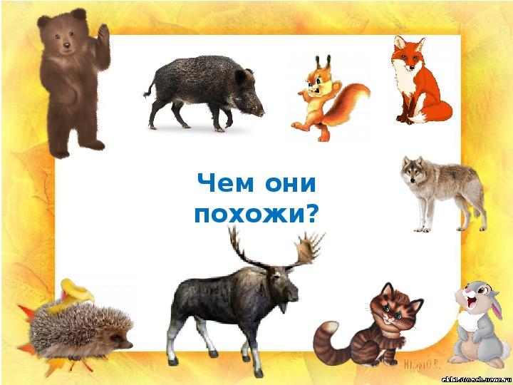 """Презентация """"Жизнь лесных зверей зимой"""" (1 класс, окружающий мир)"""