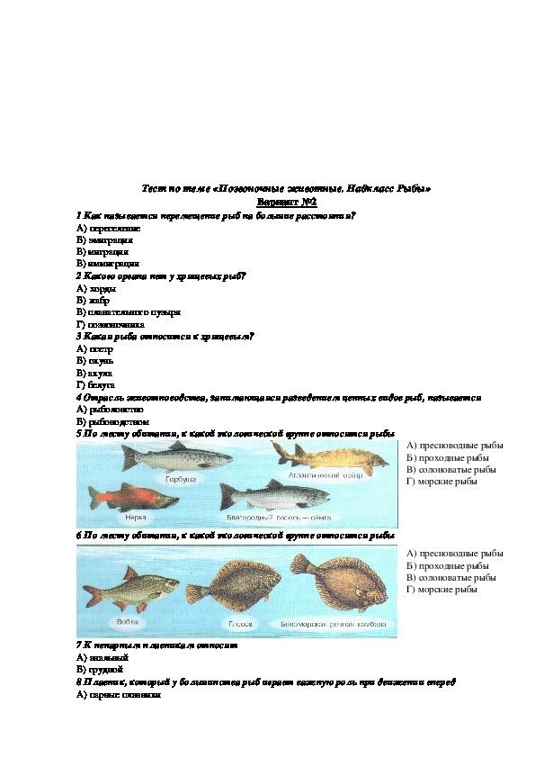 "Тест по биологии на тему ""Надкласс Рыбы"" (7 класс, биология)"