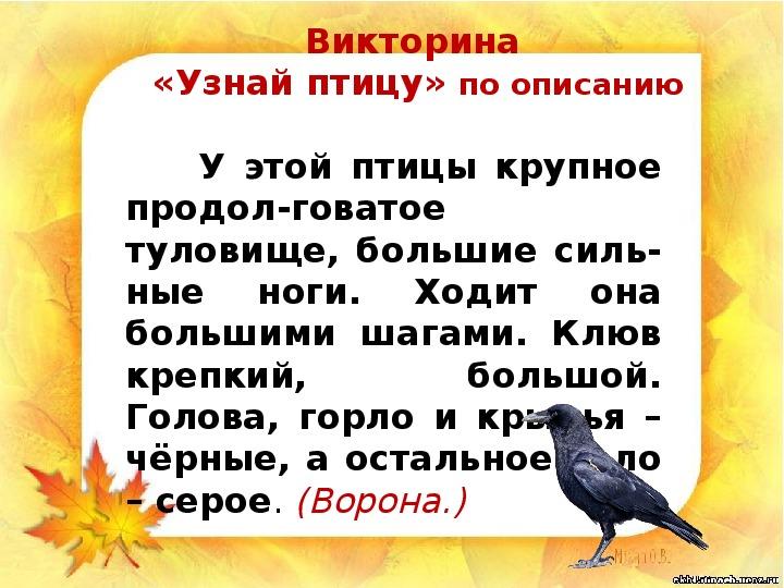 """Презентация  """"Как помочь птицам зимой""""(1 класс, окружающий мир)"""""""