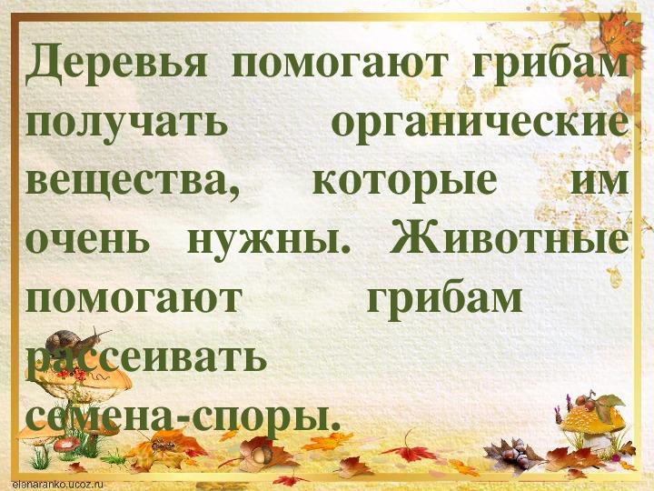 """Урок по предмету """"Человек и мир"""" на тему """"Грибы"""" (2 класс)"""