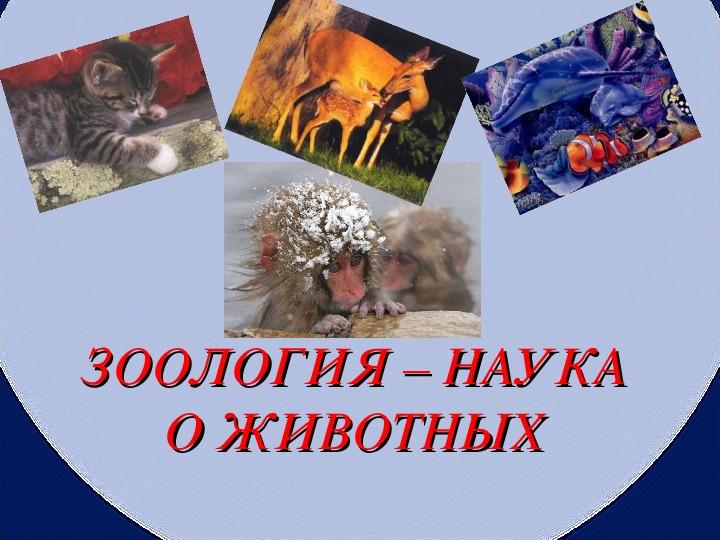 """Разработка урока по биологии """"Зоология - наука о животных"""" (7 класс)"""