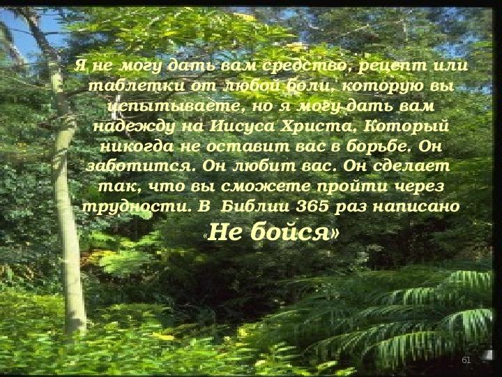 ЖИЗНЬ ХРИСТИАНИНА НА ЗЕМЛЕ
