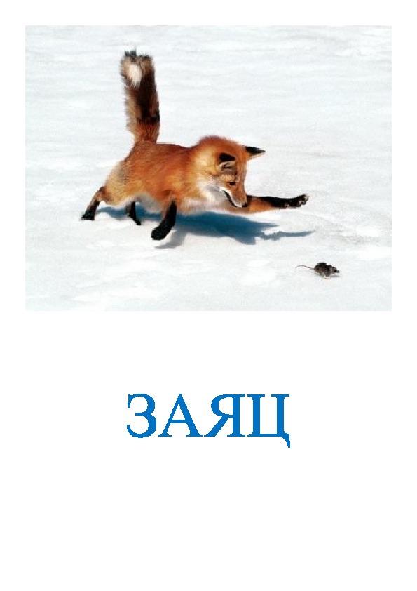 Урок-презентация - Синквейн. «Прогулка в зимний лес».  1 класс