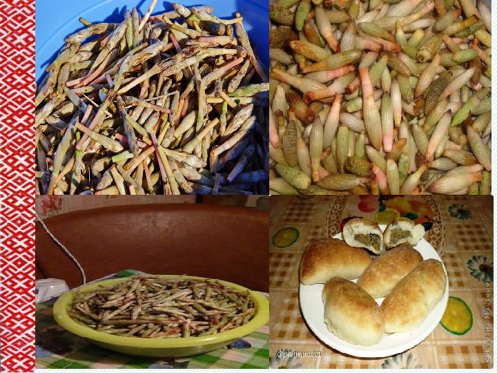 Коми -пермяцкие блюда из полевого хвоща
