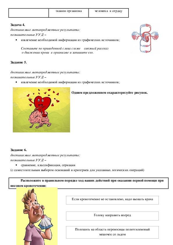 Продуктивные задания биология 8 класс