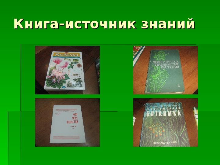 «Кладовая здоровья»  Учебно-исследовательская работа в номинации «Живая аптека»(3 класс)