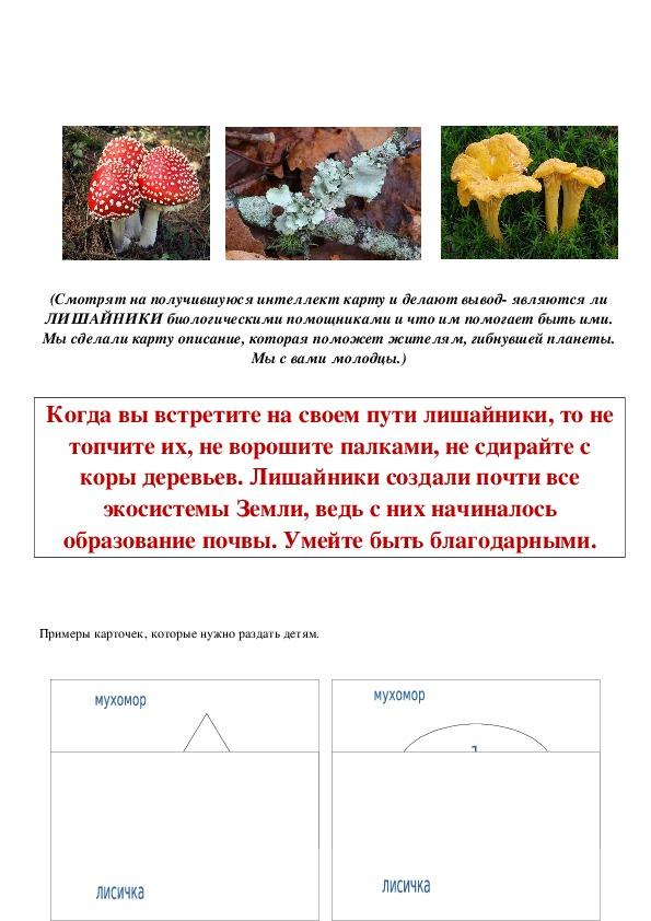 """Предметный квест по биологии к уроку по теме: """"Биологические помощники - Лишайники"""" 5 класс"""