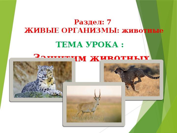Презентация к уроку русского языка№79